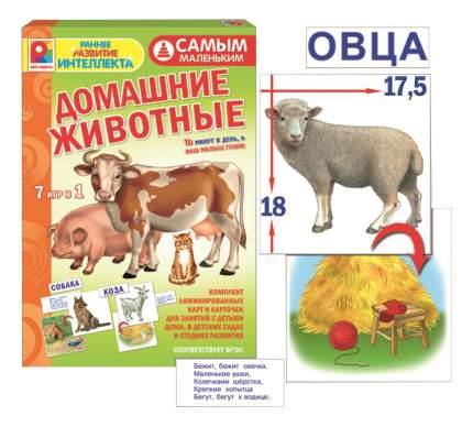 Семейная настольная игра Радуга Самым маленьким Домашние животные
