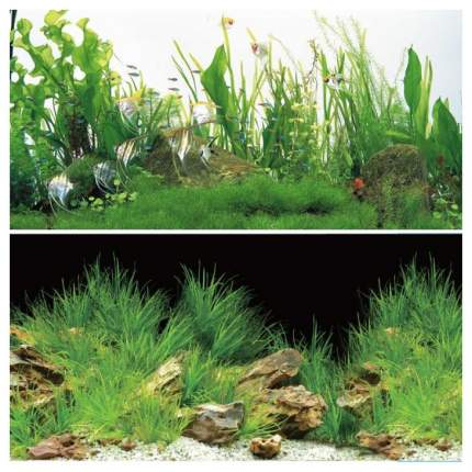 Фон для аквариума Laguna Ночная прогулка/Новое утро 1,022 кг размер 60х1500 см