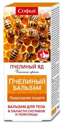 Бальзам для тела Софья пчелиный яд 75 мл