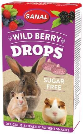 Лакомство для грызунов SANAL Wild Berry Drops sugar free Лесная Ягода, 45г