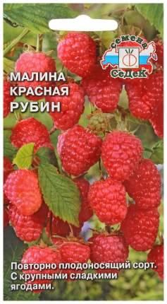 Семена Малина красная Рубин, 0,05 г СеДеК