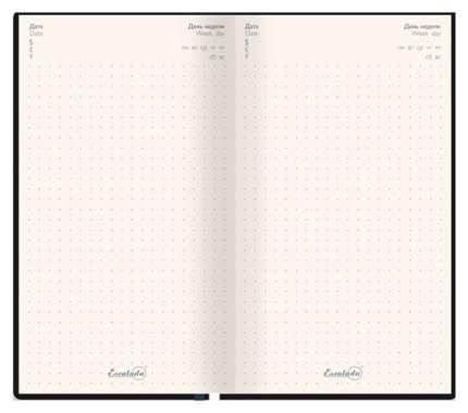 Ежедневник недатированный Феникс+ «Наппа» 120 листов, Черный