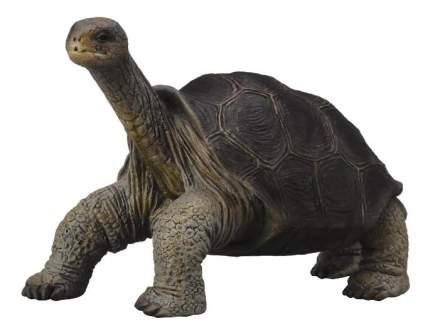 Фигурка collecta абингдонская слоновая черепаха