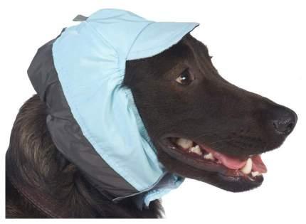 Шапка для собак ТУЗИК №5 холодная , унисекс, плащевка, фланель