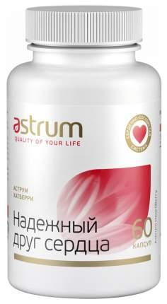 Добавка для сердца и сосудов Astrum ХатБерри: надежный друг сердца 60 капс. натуральный