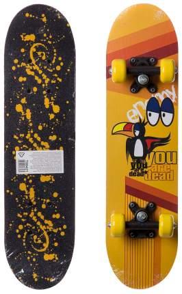 Детский скейтборд Shenzhen Toys Т88421-GW