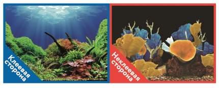Prime Фон для аквариума Prime самоклеющийся Морские кораллы/Подводный мир 30x60см