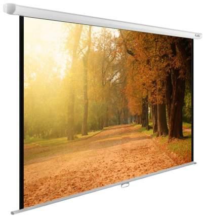 Экран для видеопроектора Cactus WallExpert CS-PSWE-200X125-WT