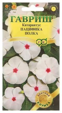 Семена Катарантус Пацифика Полка, 7 шт, Гавриш