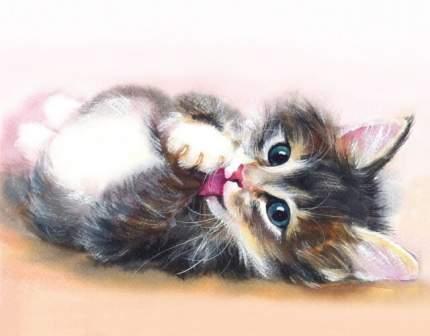 Алмазная живопись Цветной LG011 «Милый котенок»