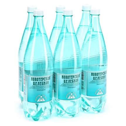 Вода минеральная Новотерская  газированная 1,5 л 6 штук в упаковке пластик