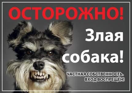 """Табличка Дарэлл """"Осторожно! Злая собака"""", формат А4"""