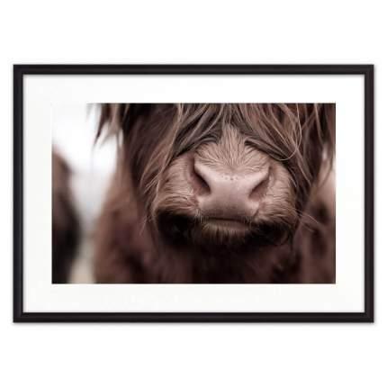 Постер в рамке Корова Close up 30 х 40 см Дом Корлеоне