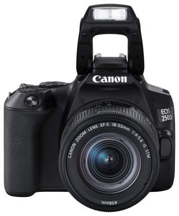 Зеркальный фотоаппарат Canon EOS 250D черный, сумка в комплекте