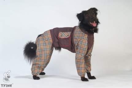 Комбинезон для собак ТУЗИК Такса большая мужской, в ассортименте, длина спины 50 см