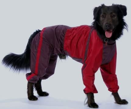 Комбинезон для собак ТУЗИК Ротвейлер мужской, в ассортименте, длина спины 65 см