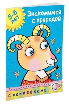 Книга С наклейками Махаон Дошкольная Мозаика. Знакомимся С природой (5-6 лет)