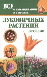 Книга Все о выращивании и выгонке луковичных Растений В России