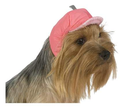 Шапка для собак ТУЗИК №0 теплая, плащевка, флис