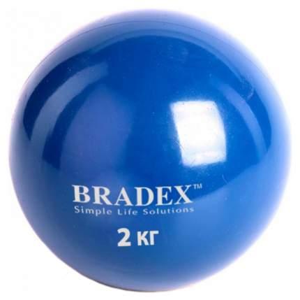 Медицинбол Bradex 2 кг SF 0257