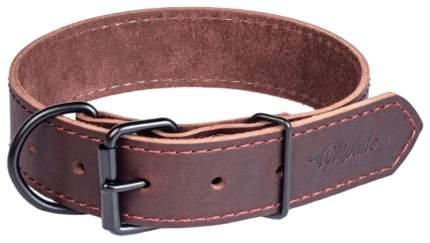 Ошейник для собак Gripalle Дакс, кожаный, стальная фурнитура, коричневый, 25мм х 35см