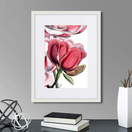 Картина Картины в Квартиру Himalaya Plants Pink-Flower on white I 1869г (32х42 см)