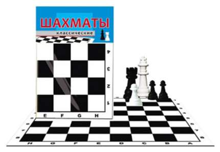 Шахматы Рыжий кот ИН-0160