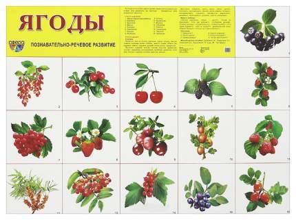 Демонстрационный плакат Ягоды 27601