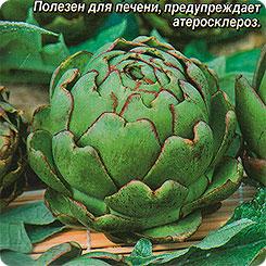 Семена Артишок Красавец, 1 г, АЭЛИТА