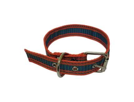 Ошейник для собак Зооник, двойная стропа, красно-синий, 47-57 см x 30 мм