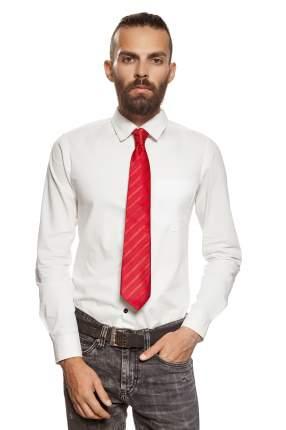Классический галстук Жаркий полдень Signature 204354 красный
