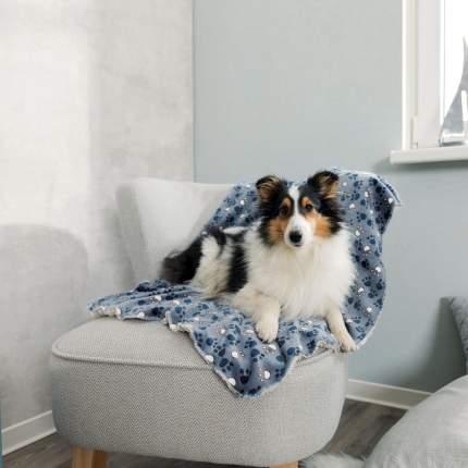 Одеяло для кошек и собак TRIXIE Tammy плюш, разноцветный, 100x70 см