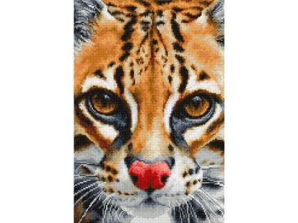 """Набор для вышивания Luca-S """"Leopardus pardalis"""""""