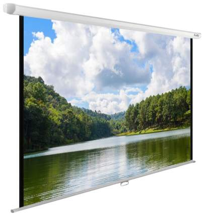 Экран для видеопроектора Cactus WallExpert CS-PSWE-240X150-WT