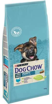 Сухой корм для щенков Dog Chow Puppy Large Breed, для крупных пород, индейка, 14кг