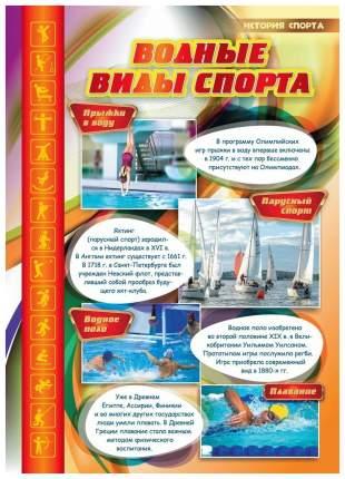 """Комплект плакатов """"История спорта"""": 16 плакатов с методическим сопровождением"""