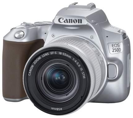 Зеркальный фотоаппарат Canon EOS 250D серебристый