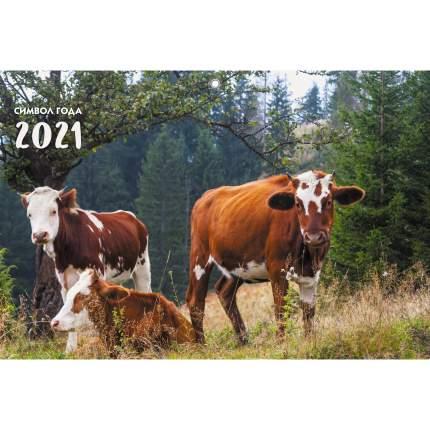 Календарь на 2021 год Listoff Символ года (квартальный на евроспирали) ККТ2102