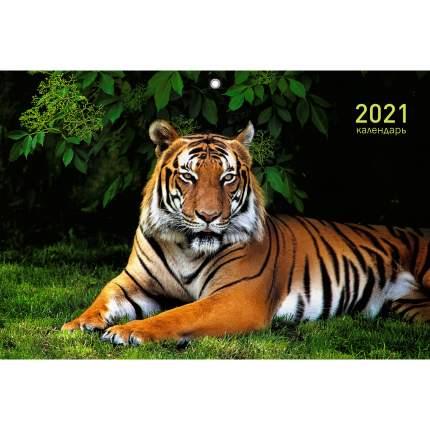 Календарь на 2021 год Listoff Дикие животные (квартальный на евроспирали) ККТ2110
