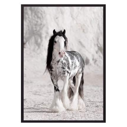 Постер в рамке Ирландская лошадь 50 х 70 см Дом Корлеоне