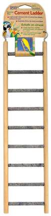 Лестница для птиц Penn-Plax Цемент 9 ступеней, бежево-серая, 9,5х1х38 см
