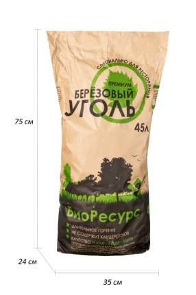 Уголь БиоРесурс 587070 Береза Баланс 45 л