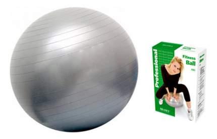 Гимнастический мяч Bradex Фитбол-65 серебристый 65 см