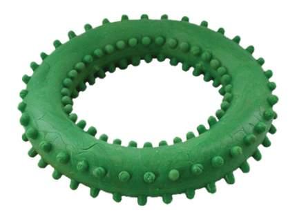 Жевательная игрушка для собак Зооник Кольцо с шипами №4, в ассортименте, 12,8 см