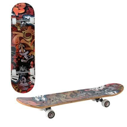 Скейтборд RGX LG DBL 351