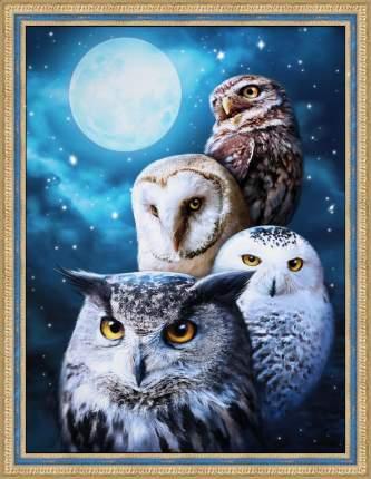 Картина стразами «Ночные совы» (АЖ-1738) 30х40 см