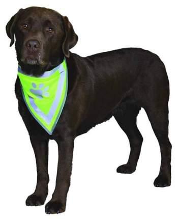 Шарф для собак TRIXIE размер S унисекс, зеленый