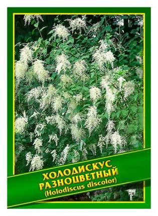 Семена Холодискус Разноцветный, 0,1 г Симбиоз