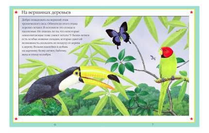 Книжка С наклейками Школа Семи Гномов Чудо-Наклейк и Мир Джунглей