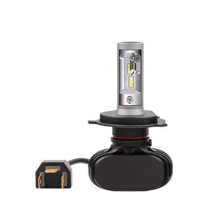 Светодиодные лампы Vizant D5 цоколь H4 с чипом csp 4000lm 5000k  (цена за 2 лампы)